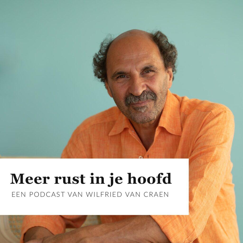 Podcast Meer Rust in je Hoofd - Wilfried Van Craen