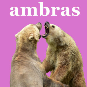 Podcast Ambras